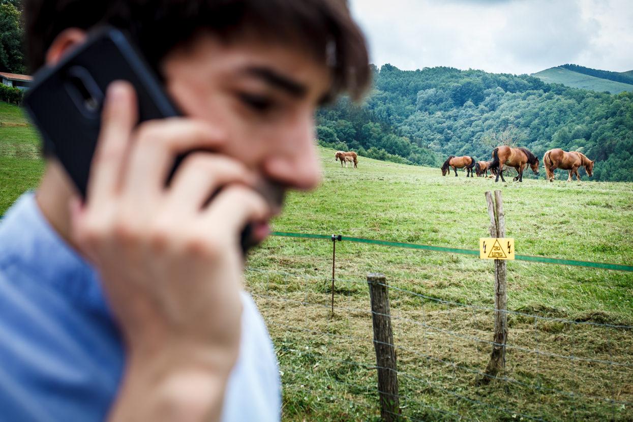 caballos en yrisarri land